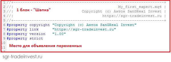 Объявление переменных в шапке MQL кода